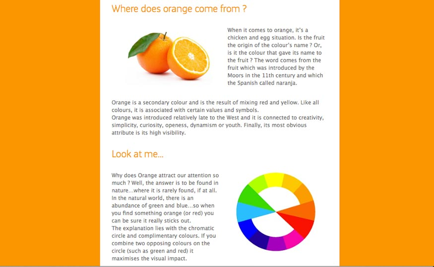 Origins-of-Orange-Trans